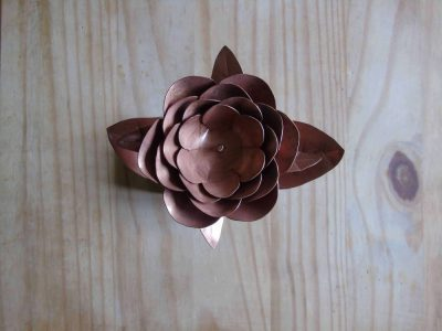 Peony copper flower from above