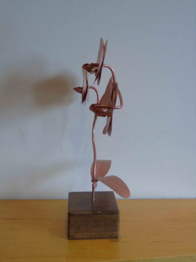 Copper orchid sideways on
