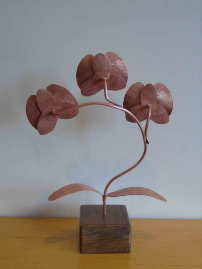 copper orchid from the back