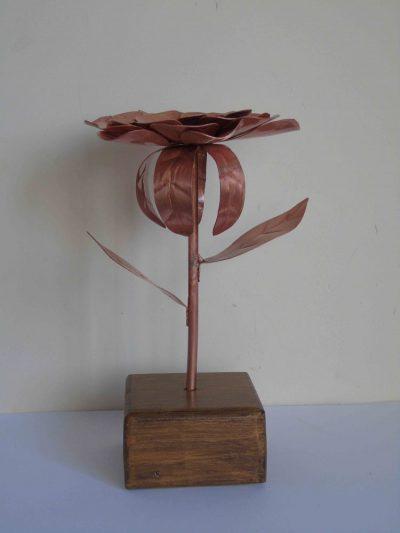 dahlia copper flower side on